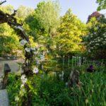 Jardin des fontaines pétrifiantes. Jardin de plantes rares